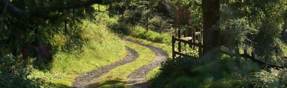 fp 13 jackdaw track westley