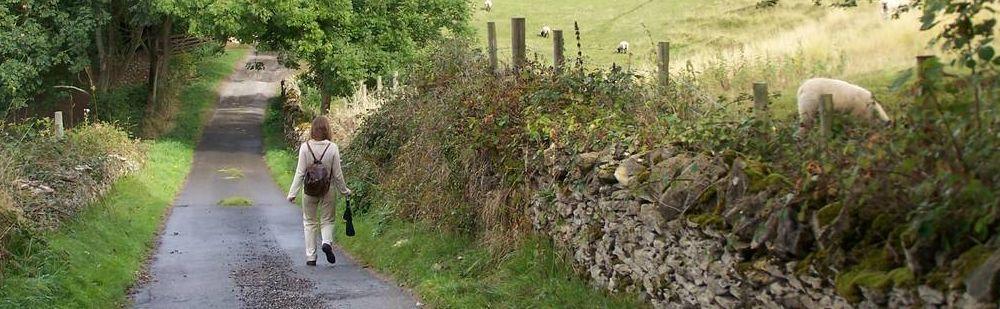 fp 6 landscape westley