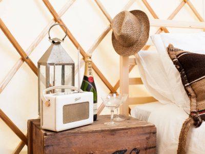 mole-end-yurt-3