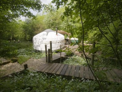 YURT IN GLADE 1