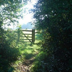 farm gate EV